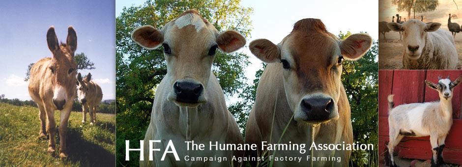 The Humane Farming Association
