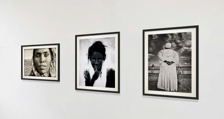 Lisa DuBois Gallery