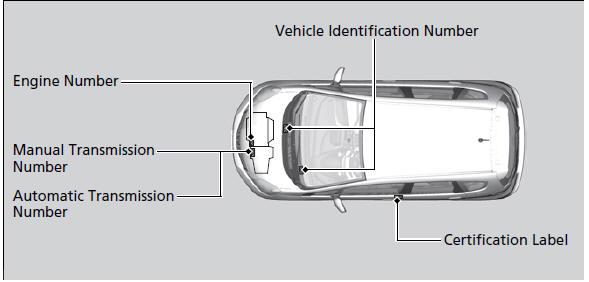 Engine Number and Transmission Number :: Identification