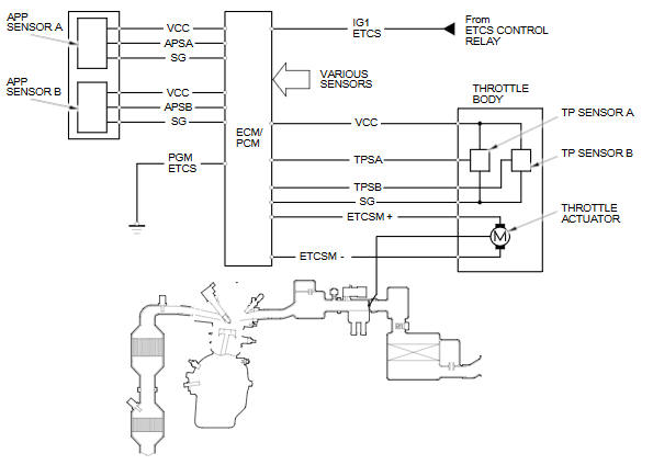 Throttle Control System Diagram 2006 Acura TL Car Stereo