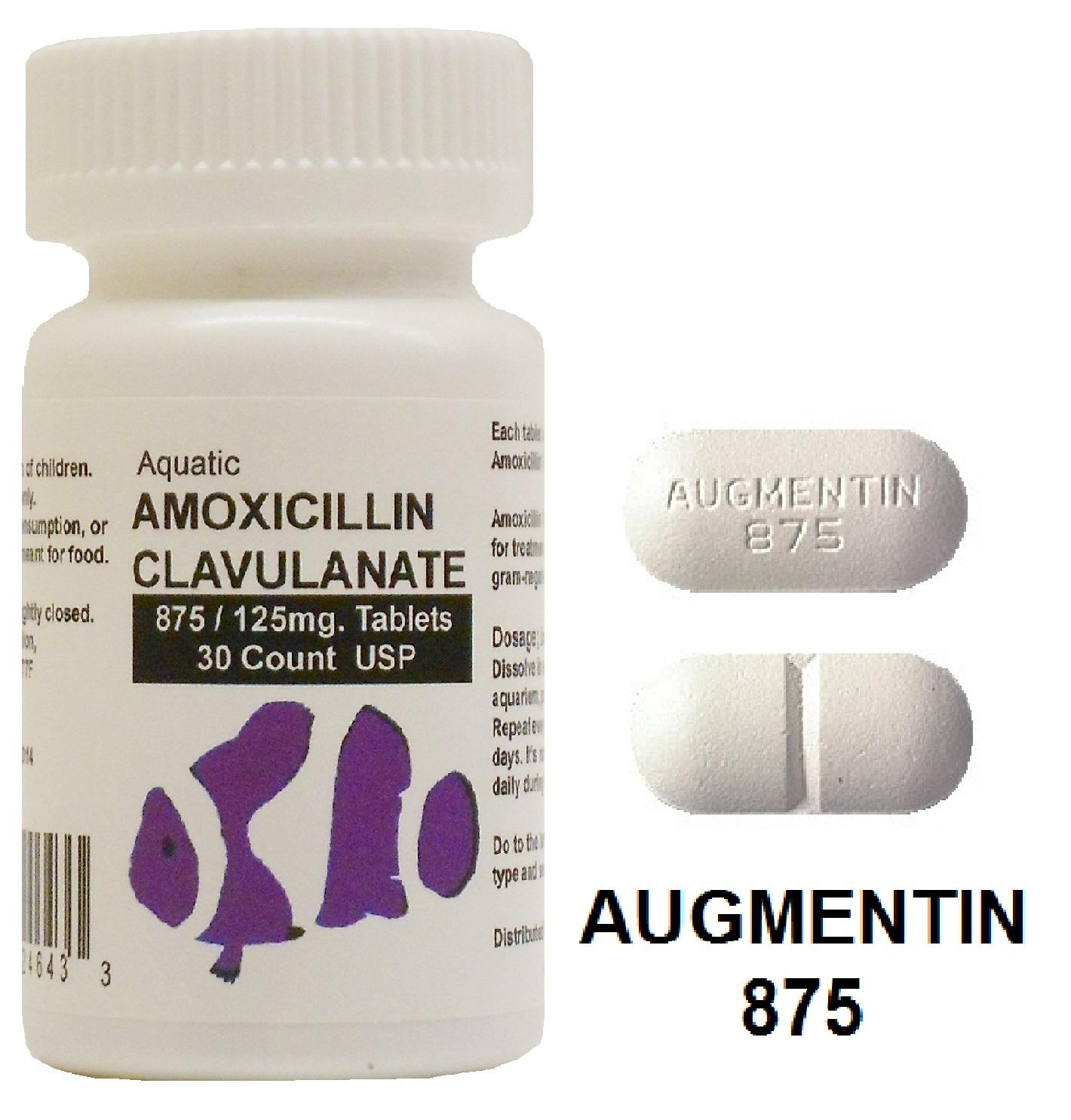 Amoxicillin Pot Clavulanate 875 125 Mg Oral Tablet