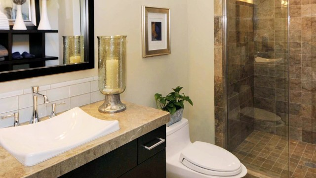 Bathroom Design Ideas with