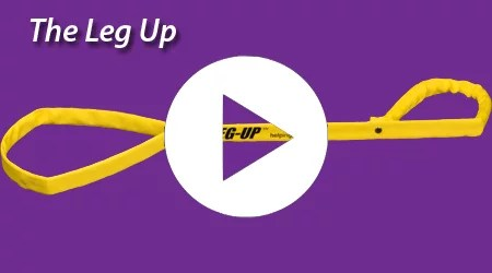 Leg-UP-Video