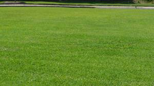 Lawn Care Services H H Landscaping Lawn Care