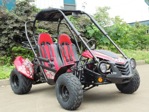 small resolution of dave kingston s mudhead 208r stock ready views replaces belt comet belt current gts 250 owners manuals go kart buggy atv pit bike