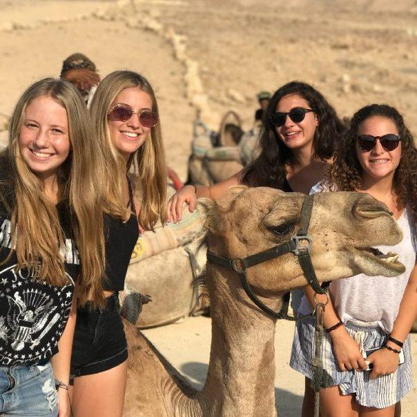 Programas en Israel