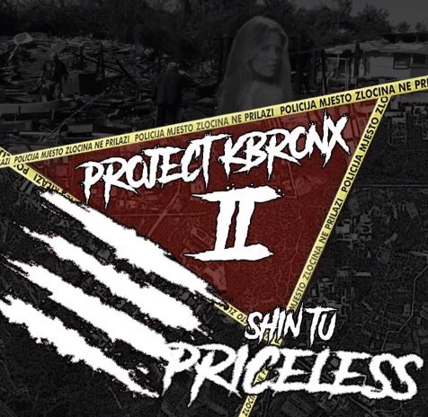 Shin Tu - Priceless (Audio)