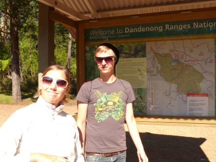 Dandenong Ranges National Park