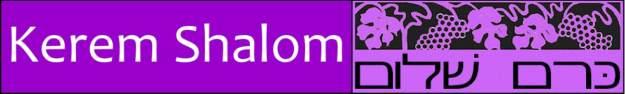 kerem-shalom-logo-2_orig