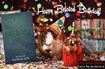 Nothing Belated Birthday