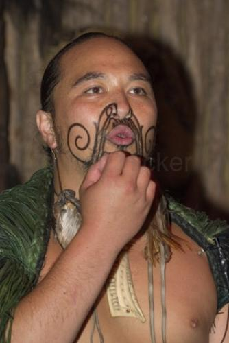 A Maori Warrior displaying his Tattoo in the Tamaki Maori Village on the