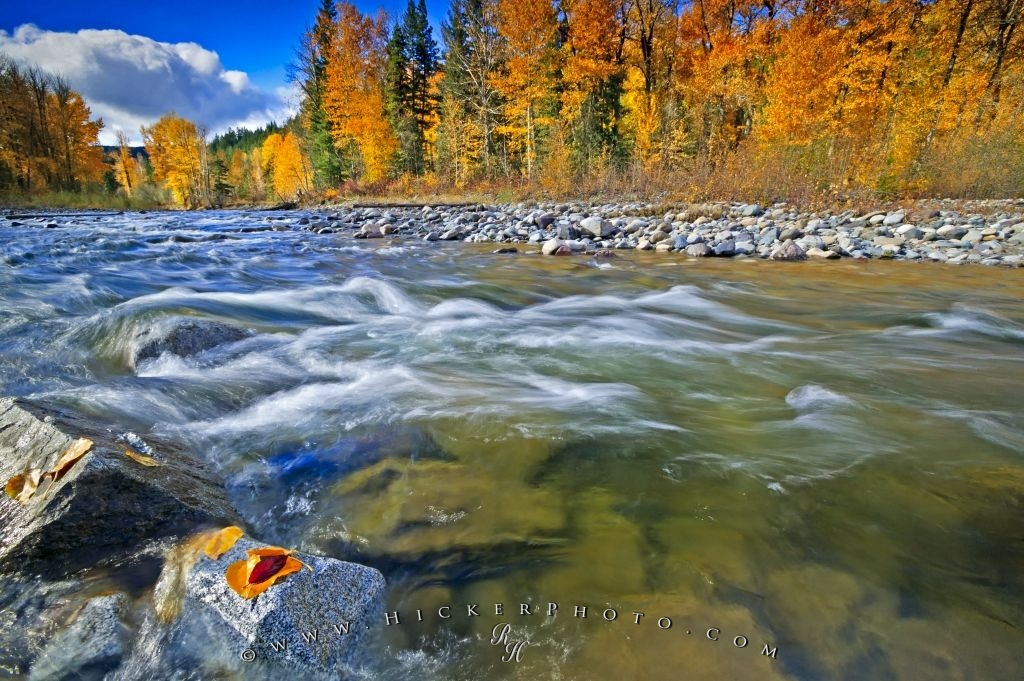 Free Wallpaper Fall Colours Vancouver Island British Columbia Photo Information