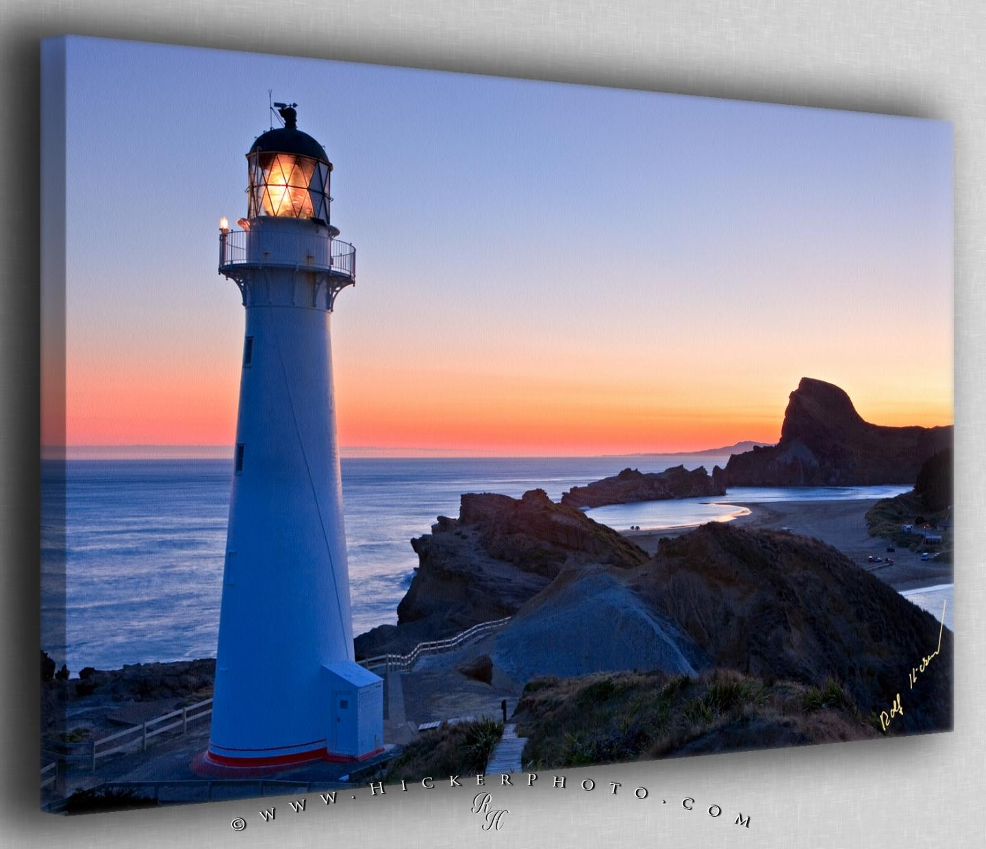 Animal Rights Wallpaper Free Wallpaper Background Castlepoint Lighthouse Scenery