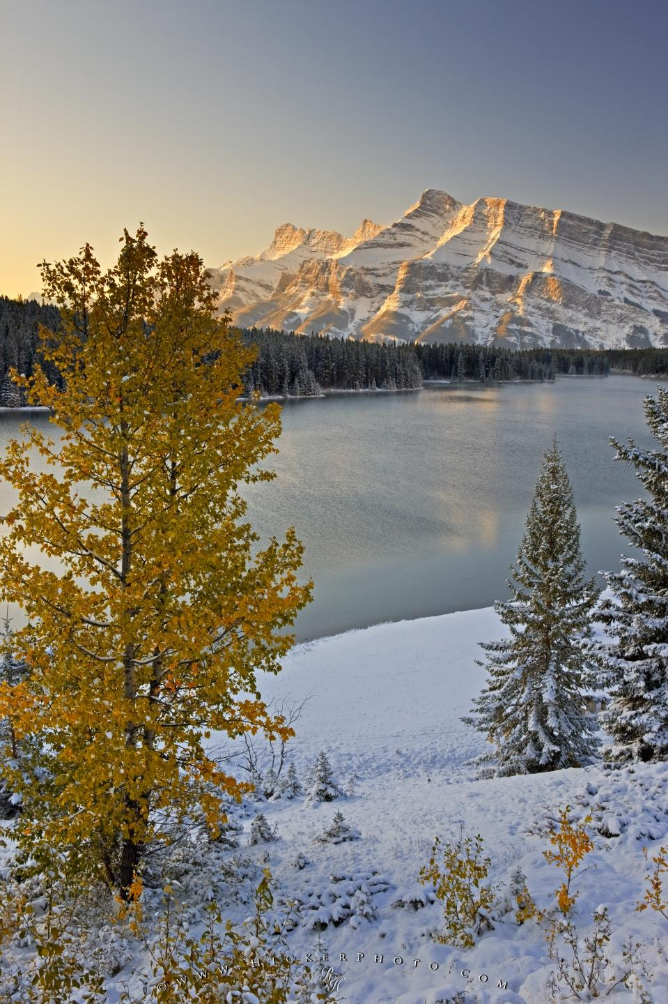 Free Wallpaper Fall Colours Free Wallpaper Background Fall Winter Scenery Rocky Mountains