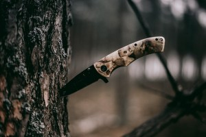 Why Your Knife Is Your Ultimate Survival Tool