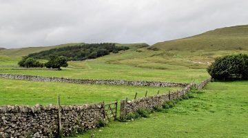 City And Rural Economics