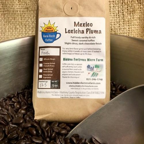 Mexico Loxicha Pluma Organic Coffee