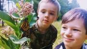 Severn Bridge School Befriends Butterflies