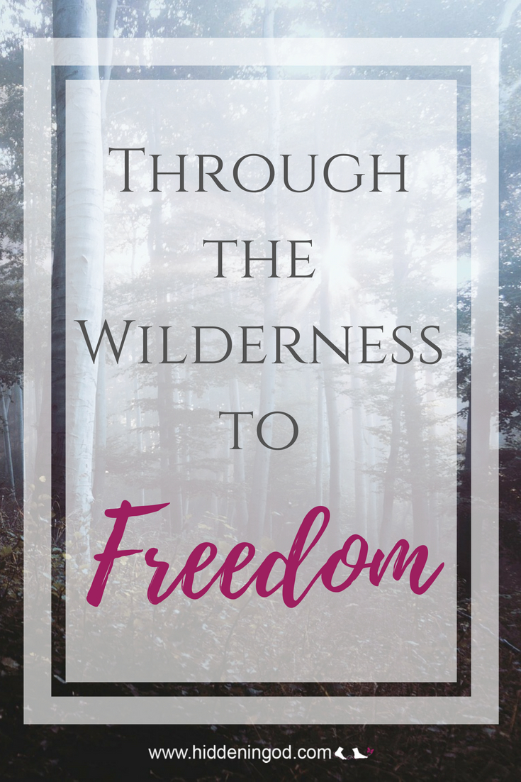 We must go through the wilderness to get to the freedom that makes us strong enough to defeat the enemy who come against us.