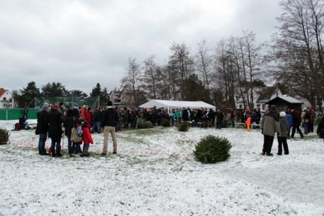 Bilder vom 3. Hiddenseer Weihnachtsbaumweitwurf 2015