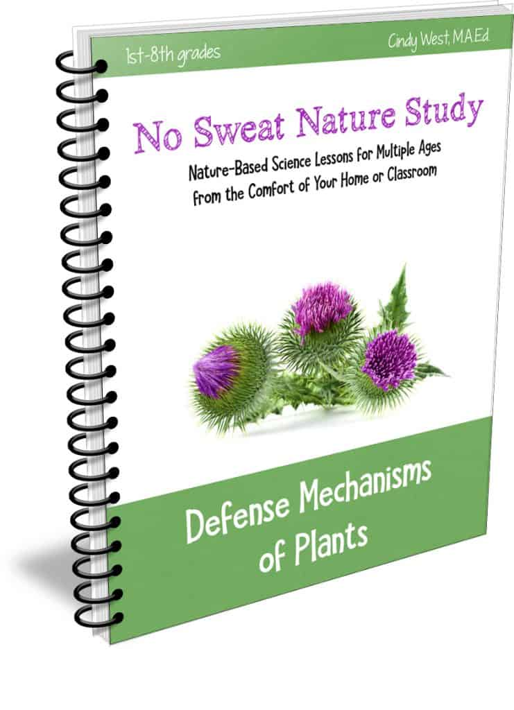 No Sweat Nature Study