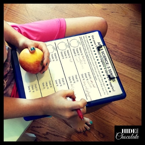 How to Experiment with Apples in Fun and Tasty Ways - Form