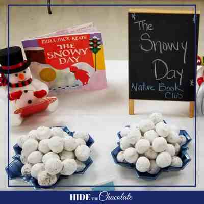 The Snow Day Nature Book Club - Table