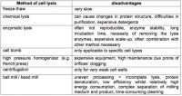 Sonication Lysis: Cell Disruption & Extraction