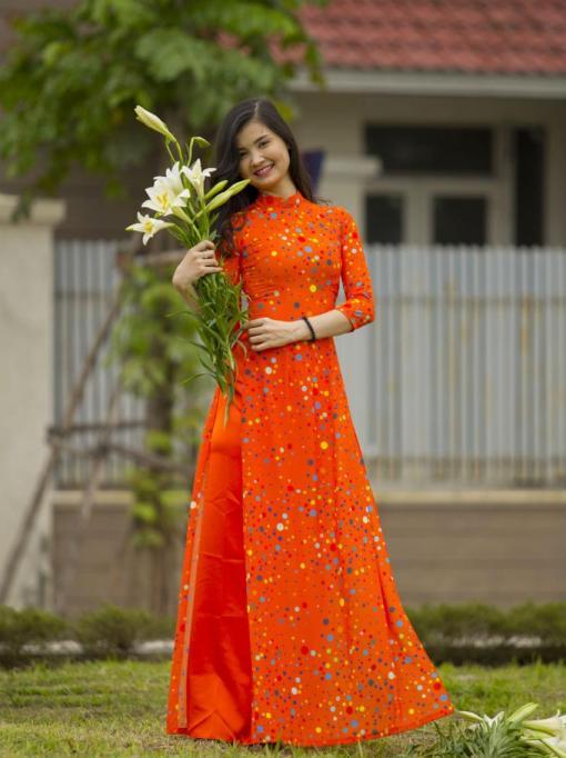 Viet Nam Ao Dai Tailor Shop 2
