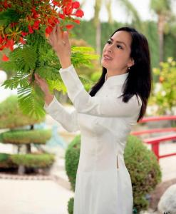 Shop Vietnam Ao Dai White Satin