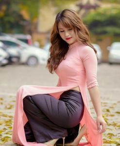 Viet Nam Ao Dai Light Pink