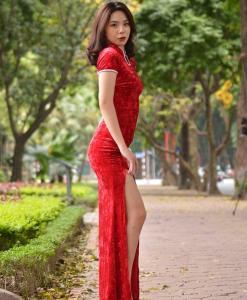 Vietnam Modern Cheongsam 2