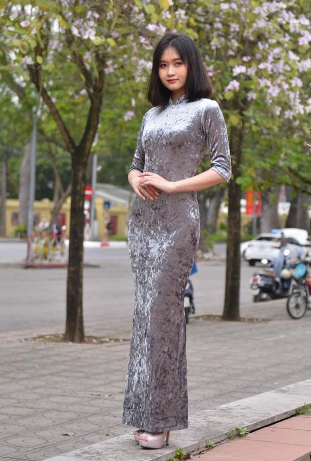 Vietnam Cheongsam Dress 2