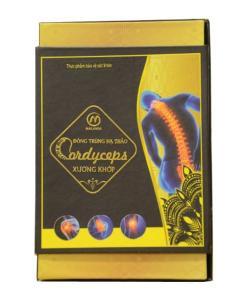 Arthrose cordyceps ilitaris 2