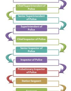 Hong kong police force hierarchy also system structure rh hierarchystructure