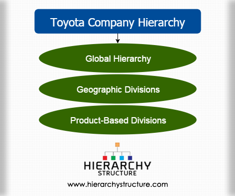 toyota company hierarchy   toyota's organizational structure
