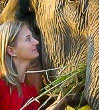 Ontmoeting met een olifant