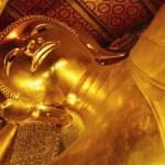 Wat heeft Thailand te bieden