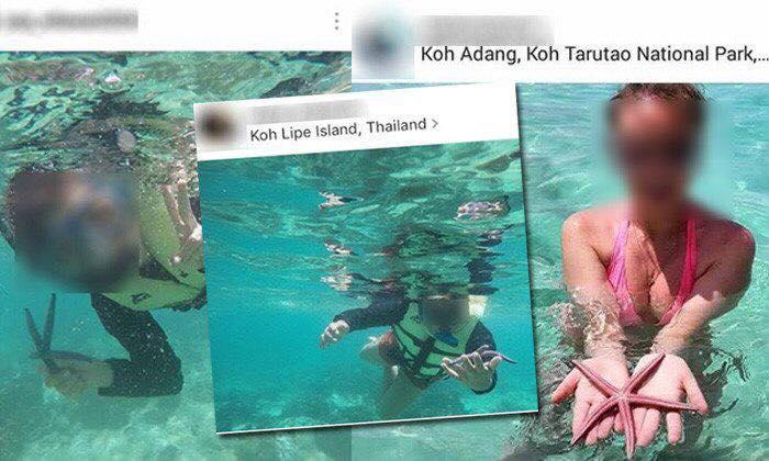 tropische zeedieren vasthouden
