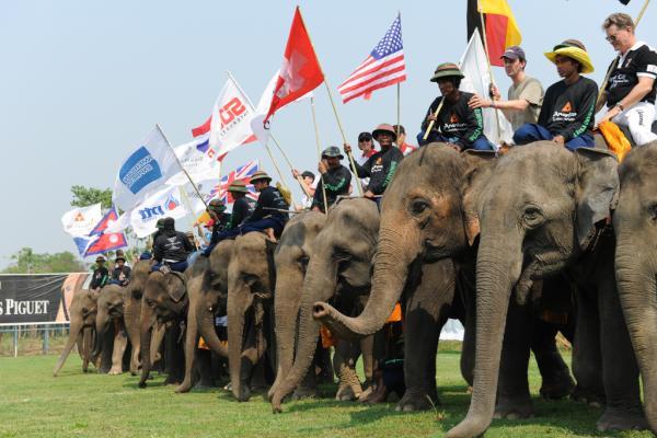 Olifantenpolo in Thailand: stof tot nadenken