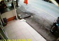 Thaise verkeersongelukken