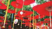 Chiang Mai is de culturele hoofdstad van Thailand