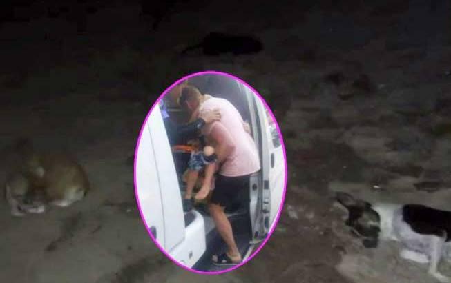 Jongetje (5) aangevallen door straathonden op Ao Nang Beach