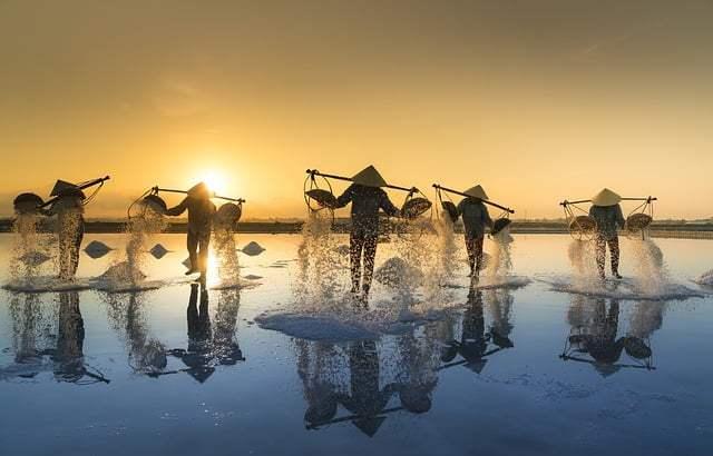 Een rondreis door Thailand en Vietnam