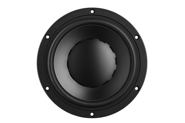Dynaudio Special Forty 2020 11