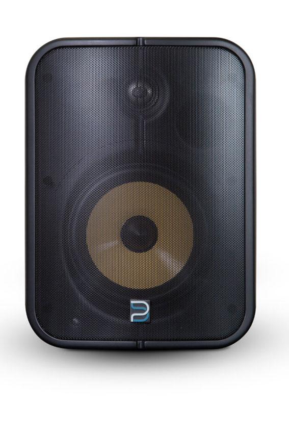 Bluesound Professional BSP1000 04