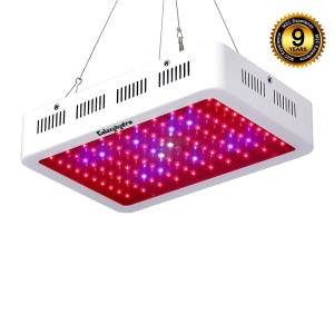 5 Best LED Grow Light Reviews