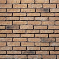 Thin Brick Wall Facings - Thin Brick Wall Facades - Thin Brick Wall Slips - Thin Bricks