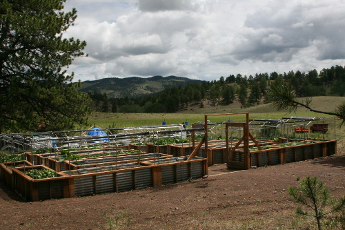 garden500x333