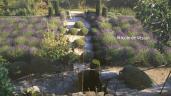 Nicole de Vesian – Her Artistic Garden Sanctuary